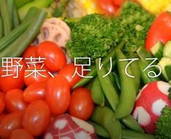 社会人野菜3