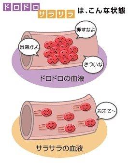 を 治す に 血液 は ドロドロ